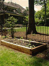 Raised Garden Beds for Sale in Charlotte, NC - Microfarm Organic Gardens