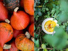 Pumpkin, Vegetables, Food, Easy Cooking, Pumpkins, Essen, Vegetable Recipes, Meals, Squash