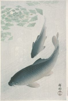 Carp Ohara Shōson (Koson) (Japan, 1877-1945) Japan, 1926 Prints; woodcuts Color woodblock print Image: 13 7/16 x 9 3/4 in. (36.3 x 24.7 cm); Paper: 14 5/16 x 10 5/16 in. (39.1 x 26.2 cm) Gift of Mr. and Mrs. Felix Juda (M.73.37.395) Japanese Art