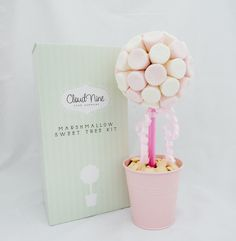Fancy building your own Sweet Tree.  This beuatifully packaged kit contains all you need to make a small Marshmallow Sweet Tree.  Retailing at £19.95 including free postage to UK mainland through Cloud Nine Cake Company