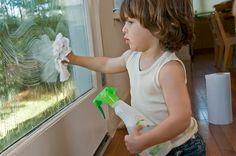 Easy, safe recipes for window cleaners! You will never spend $5.00 on a bottle of Cleaner again.