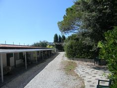 Between Liguria and Tuscany help us with our house, garden and our boat company