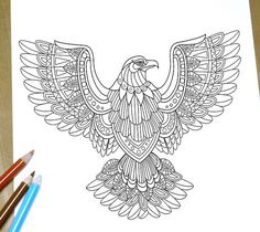 flying eagle coloring page adult coloring page print