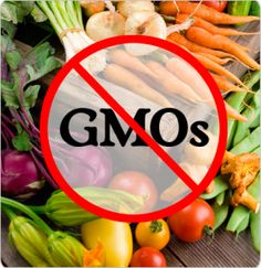 26 Countries Banned GMO's, Why Not America? This New Study Links GMOs To Cancer, Liver/Kidney Damage & Severe Hormonal Disruption. GMO's Are A Threat To Our Health & The Environment! WHY NOT AMERICA? BECAUSE WASHINGTON WORKS FOR THE HOUSE OF ROTHSCHILD WHO OWNS MONSANTO.    |  And they want to kill us. http://www.collective-evolution.com/2014/07/15/new-study-links-gmos-to-cancer-liverkidney-damage-severe-hormonal-disruption/