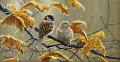 rain and sparrows by Jeremy Paul