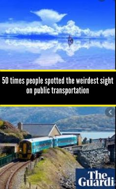 50 times people spotted the weirdest sight on public transportation they had to get on camera Couple Pictures, Senior Pictures, Italian Language, Korean Language, Japanese Language, Spanish Language, French Language, Metal Photo Frames, Prom Photos