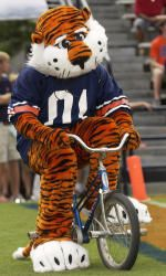 Aubie on the go entertaining the fans, non-stop! ~ Check this out too ~ RollTideWarEagle.com sports stories that inform and entertain and Train Deck to learn the rules of the game you love. #Collegefootball Let us know what you think. #Auburn