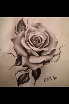 Eris Qesari, Eris Qesari Eris Qesari … Eris Qesari …, – Rosentattoo – - Jason Floyd DIY and Art Neck Tattoos, Body Art Tattoos, Sleeve Tattoos, Tatoos, Rose Drawing Tattoo, Tattoo Drawings, Tatoo Rose, Simple Rose Tattoo, Rose Tattoo Thigh