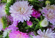 Flowers from a market in Burma