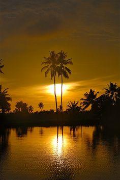 Kerala Backwater Sunrise