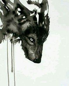 Lobo acuarela
