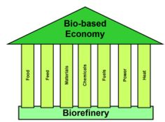 Biorefinery - the foundation for the bio-based economy