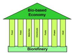 Biorefinery - the foundation for the bio-based economy