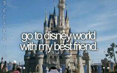 Go to Disney World with my best friend.
