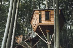 Charming, Serene Treehouse Hotels In Woods Offer Respite From The Outside World - DesignTAXI.com