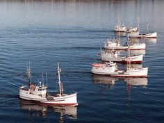 Alaska+Commercial+Fishing | 360 North longline schooner fleet now down to 3 or 4 boats now sad really
