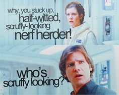 He gets called stupid, arrogant, scruffy looking and a nerf-herder(which I am assuming is a bad job) but he is most worried about wheat her or not he is really 'scruffy'. Star Wars Love, Star Wars Saga, Star War 3, Star Trek, Star Lord, Nerf, Star Wars Quotes, Han And Leia, Princess Leia