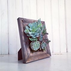 Vertical Succulent Planter Garden (Succulents in a Picture Frame!) by VerticalFlora via Etsy