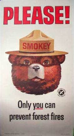* Smokey the Bear * shout out to my Uncle Larry who introduced me to Smokey being a forest firefighter