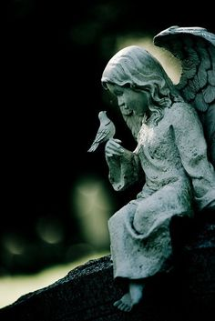 Angel with bird statue, Mount Auburn Cemetery, Cambridge, MA Cemetery Statues, Bird Statues, Angel Statues, Cemetery Angels, Cemetery Art, Angel Sculpture, Garden Sculpture, Ceramic Sculpture Figurative, Garden Angels