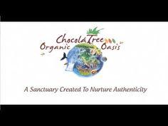ChocolaTree Organic Oasis in Sedona Arizona