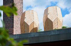 Bienen Lebensraum in der Stadt schaffen, hoch über den Dächern Oslos.