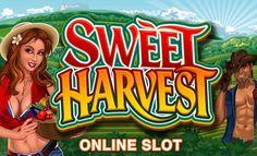 Mahsulleri toplamanın zamanı geldi! Sweet Harvest, Microgaming firmasından gelen 5 çarklı ve 20 ödeme çizgili video slot oyunudur. Tema olarak çiftçilik yaşantısını kullanan oyun 12 adet ücretsiz çevirme hakkı kazanmanızı sağlıyor. Oyununuz verimli olsun! Bol şans!