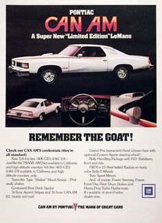 1977 Pontiac LeMans Sport Can Am Coupe. Available Rated @ 185 HP. I wanted one of these in the worst way. Pontiac Lemans, Pontiac Cars, Pontiac Firebird, Vintage Advertisements, Vintage Ads, Grand Prix, Hurst Oldsmobile, Car Brochure, Gm Car