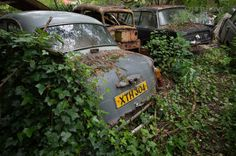 Tucked away in the woods, somewhere in northern england is a rustic time capsules slowly taken back by nature. [cycloneslider id=cars] Northern England, Woods, Vehicles, Forests, Rolling Stock, Vehicle, Wood