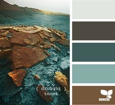 Light gray, dark gray, dark turquoise, light turquoise and brown.
