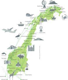 Explore Norway Ticket  - two weeks unlimited flights!