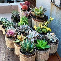 Top Creative DIY Cactus Planters Ideas You Should Copy Right Now no 45