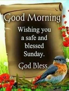 Sunday Wishes, Blessed Sunday, Good Morning Wishes, Places, Quotes, Good Morning Messages, Qoutes, Quotations, Lugares