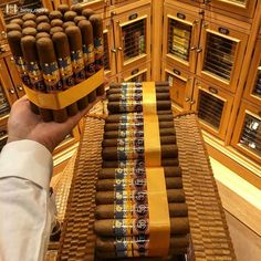 Bunch of Cohiba cigars Good Cigars, Cigars And Whiskey, Bourbon, Cohiba Cigars, Cigar Shops, Cigar Art, Cigar Club, Premium Cigars, Cigar Humidor