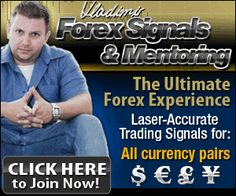 Qualities of a Good Forex Trading Mentor - BabyPips com