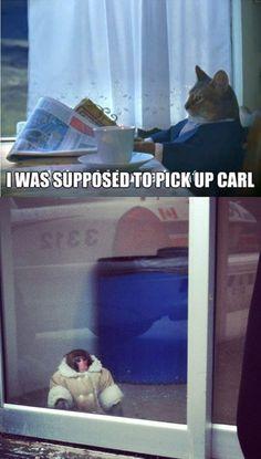 IKEA Monkey.