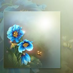 Moonbeam's Himalayan Blue Poppies (FS/CU) [Moonbeam's Himalayan Blue Poppi] : Scrap and Tubes Store, Digital Scrapbooking Supplies Framed Wallpaper, Flower Wallpaper, Rose Pictures, Pretty Pictures, Flower Frame, Flower Art, Valley Of Flowers, Boarders And Frames, Flowers Gif