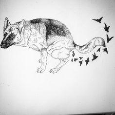 Dog, birds, freedom