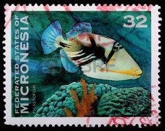 Federated States of Micronesia: Estampilla.