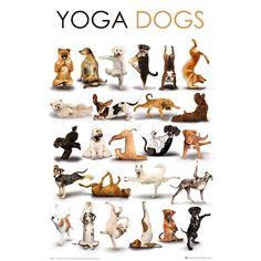It just needs downward dog ;)  Yoga Inspiration