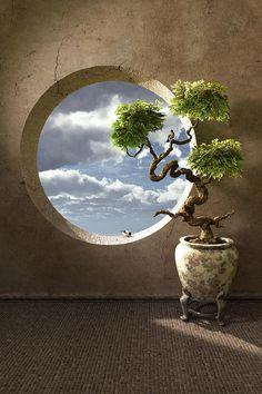 Haiku bonsai with round moon window Wall Murals, Wall Art, Japanese Flowers, Bonsai Garden, Through The Window, Window View, Ikebana, Haiku, Digital Art