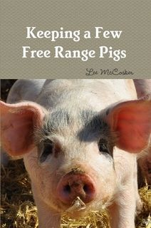 Australian Free Range Pastured Pig Farmers - Getting Started Baby Chickens, Raising Chickens, Chickens Backyard, Livestock Farming, Pig Farming, Urban Farming, Future Farms, Hobby Farms, Free Range