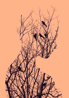 Andreas Lie – Birds