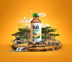 Bai | Greatest Ingredients Sweepstakes on Behance