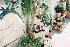 spring  - by ana fiambre -