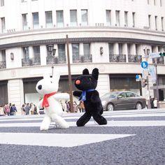 6/15今日のリサとガスパール http://parismag.jp/ #銀座をお散歩!銀ブラっていうの? #銀ブラ #銀座 #Japon #お散歩 #Marcher #PARISmag #paris #パリ #France #フランス #パリの住人 #リサとガスパール #GaspardetLisa #가스파드앤리사 #가스파드