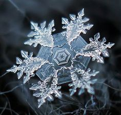 A real snowflake, captured forever through macrophotography