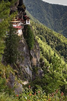 "Bhutan- Tigers Nest - Taktshang Monestery    Taktshang is the most famous of monasteries in Bhutan. It hangs on a cliff at 3,120 metres (10,200 feet), some 700 meters (2,300 feet) above the bottom of Paro valley, some 10 km from the district town of Paro. Famous visitors include Shabdrung Ngawang Namgyal in the 17th century and Milarepa.  The name means ""Tiger's nest"", the legend being that Padmasambhava (Guru Rinpoche) flew there on the back of a tiger. The monastery includes seven temples…"