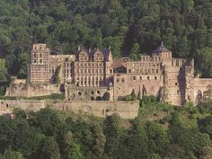 "Heidelberg Castle. I actually tried to bite the giant brass ring to ""win"" the keys to the castle. I was 8."