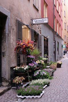 Stockholm - blommor, Christophe's